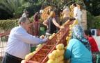 Narenciye Festivali