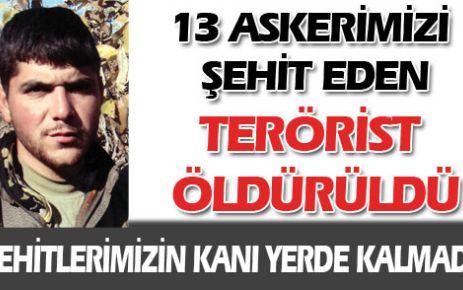13 askeri şehit eden PKK'lı öldürüldü