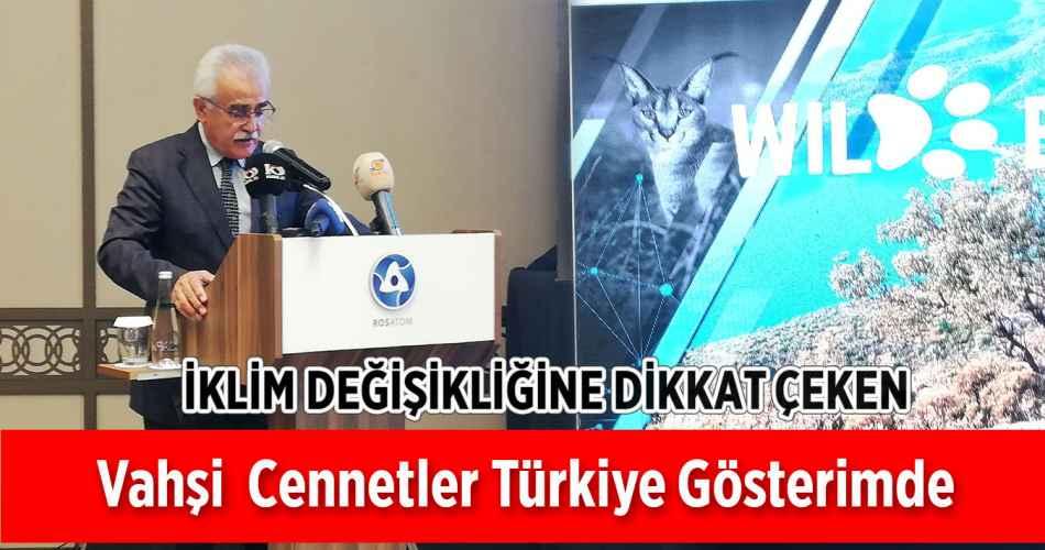 Vahşi Cennetler Türkiye Gösterimde