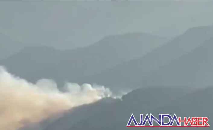 Aydıncık'taki korkutan orman yangını