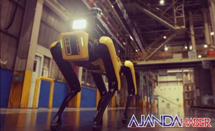 Hyundai, Güvenlik Robotu Üretti.