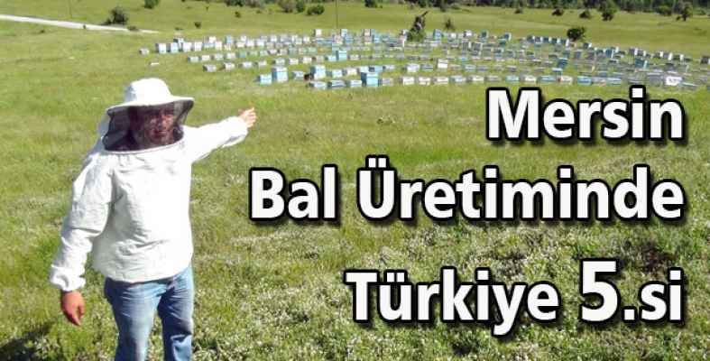 Bal Üretiminde Türkiye 5.si