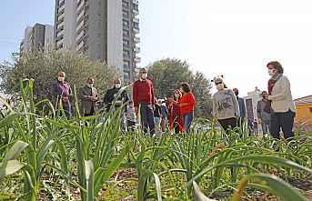 Belediye Destekliyor Kadınlar Üretiyor