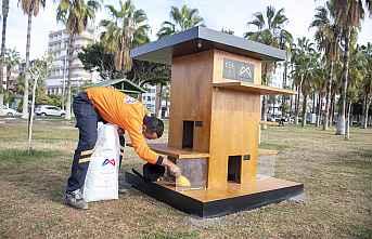 Büyükşehir Sahildeki Kedi Evlerini yeniliyor