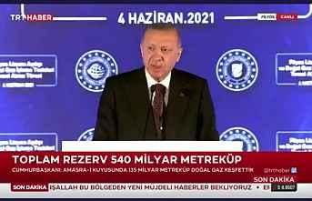 Cumhurbaşkanı enerji hamlesi müjdesi açıkladı