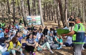 Ormanlar için eğitim seferberliği
