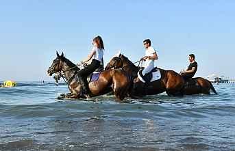 Samsunda, Atların deniz keyfi