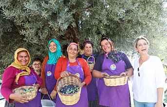 Mut'ta Anıt Zeytin ağacı ekinliği yapıldı