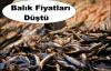 Balık Fiyatları Normale Döndü