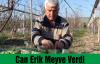 Can Erik Meyve Verdi