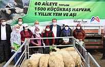 Köyümüze Destek Projesinde Hayvanlar Üreticiye teslim ediliyor